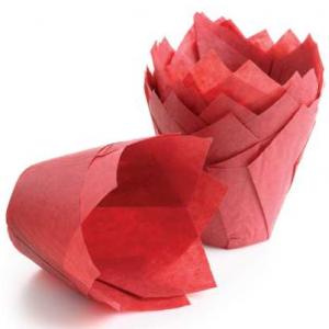 alf-raudonos-1